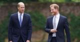 Принцы Гарри и Уильям открыли памятник принцессе Диане — фото